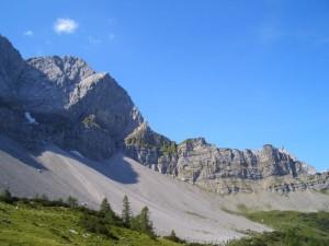 Binsalm Silberregion Karwendel