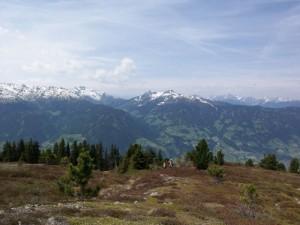Hamberg Zillertal